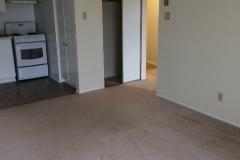 Living-room-to-hall